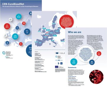 ERN-EuroBloodNet Dissemination material is already available!
