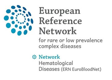 ERN-EuroBloodNet deliverables from 2nd year of implementation already available!
